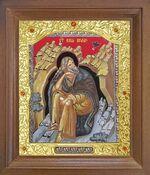 Илья Пророк. Икона в деревянной рамке с окладом (Д-26псо-124)
