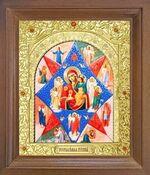Неопалимая Купина Б.М. Икона в деревянной рамке с окладом (Д-25псо-41)