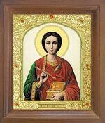 Пантелеймон. Икона в деревянной рамке с окладом (Д-25псо-47)