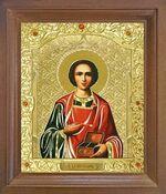 Пантелеймон. Икона в деревянной рамке с окладом (Д-26псо-48)