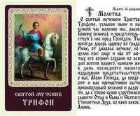 Трифон, Святой мученик, икона ламинированная